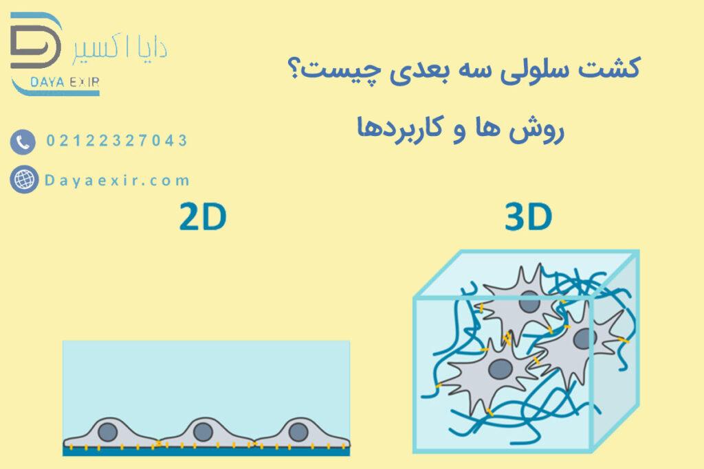 کشت سلولی سه بعدی چیست؟ روش ها و کاربردها | دایا اکسیر